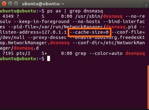 Checking DNS Cache
